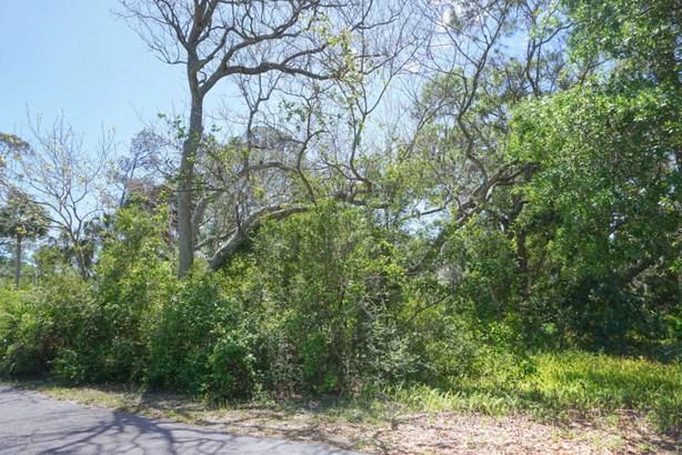 Regular Lot,Wooded - FERNANDINA BEACH, FL (photo 5)