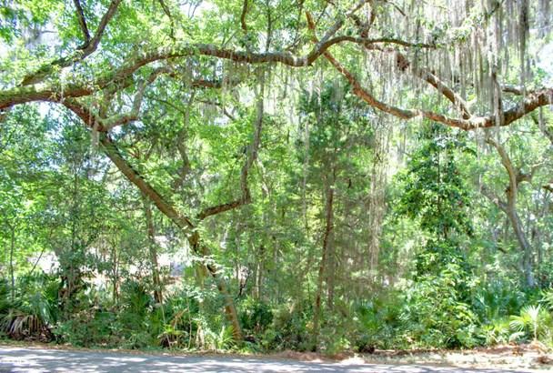 Sngl. Fam.-Detached - FERNANDINA BEACH, FL (photo 4)