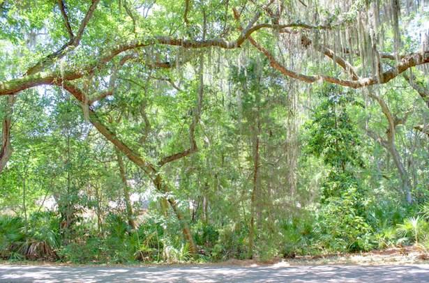 Sngl. Fam.-Detached - FERNANDINA BEACH, FL (photo 5)