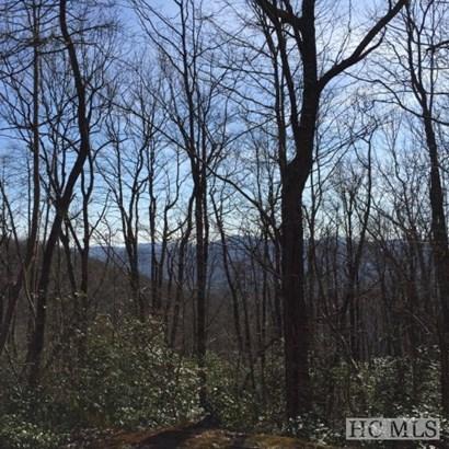 Land - Sapphire, NC (photo 2)