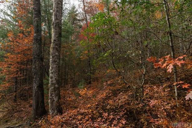 Land - Cullowhee, NC (photo 3)