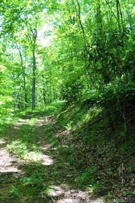 Land - Glenville, NC (photo 4)