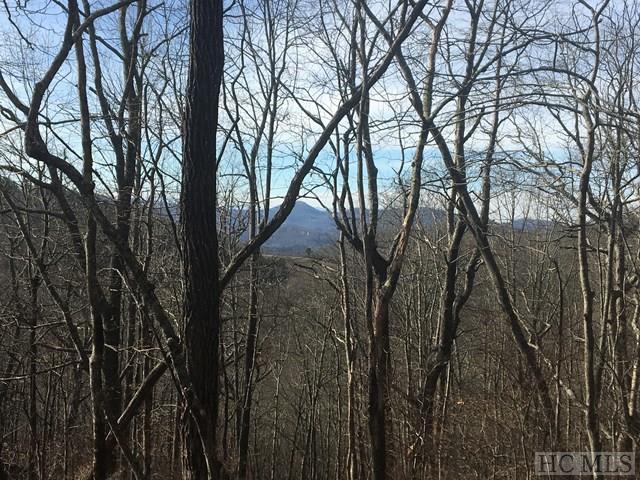 Land - Glenville, NC (photo 1)