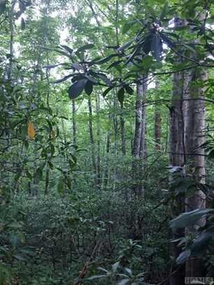 Land - Sapphire, NC (photo 4)