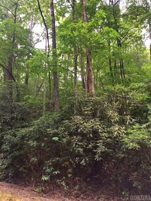 Land - Sapphire, NC (photo 5)