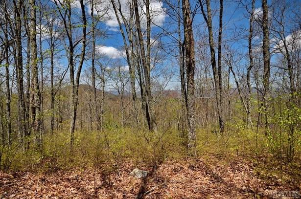 Land - Glenville, NC (photo 2)