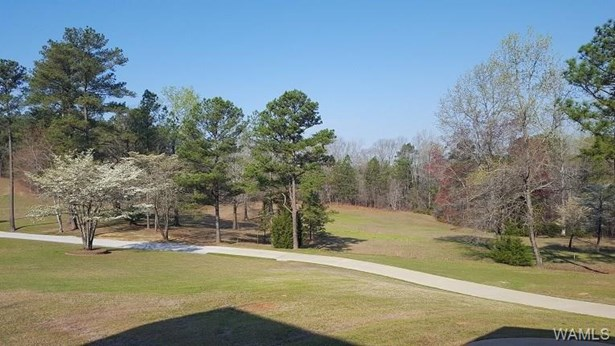 15277 Serty Boyd Rd, Duncanville, AL - USA (photo 5)