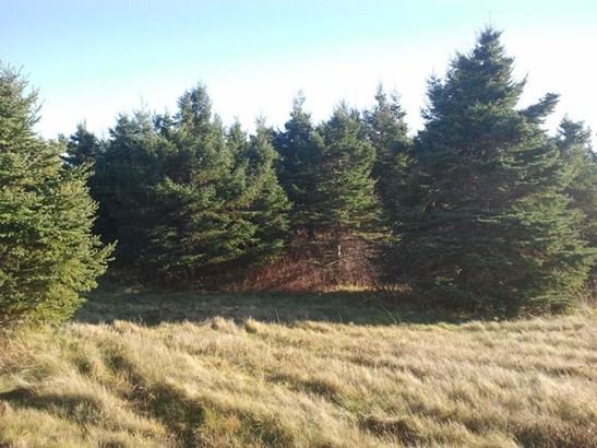 Lot 18-6 Sand Point Road, Tatamagouche, NS - CAN (photo 3)