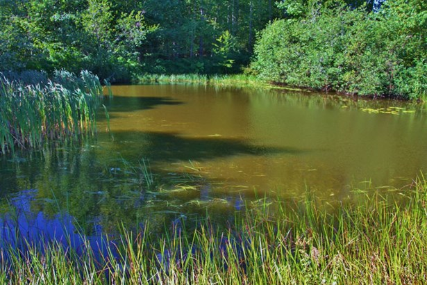 Lot Highway 340, Corberrie, NS - CAN (photo 4)