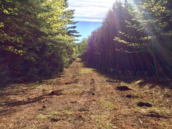 Lot F Cove Road, Maders Cove, NS - CAN (photo 4)