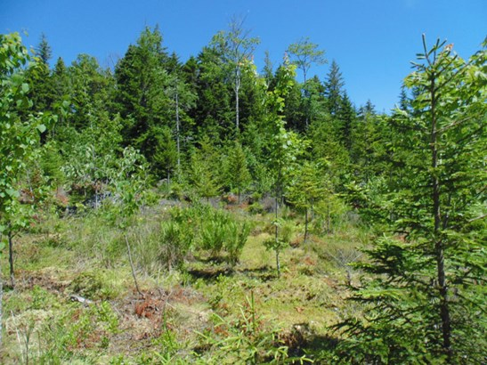 Lot 2014-bc Deer Lane, Deep Cove, NS - CAN (photo 1)