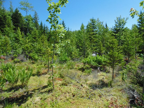 Lot 2014-bc Deer Lane, Deep Cove, NS - CAN (photo 2)