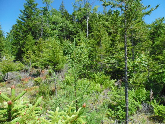 Lot 2014-bc Deer Lane, Deep Cove, NS - CAN (photo 4)