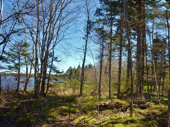 Lot 17 & 18 Victor Lake Estates Road, Concession, NS - CAN (photo 5)