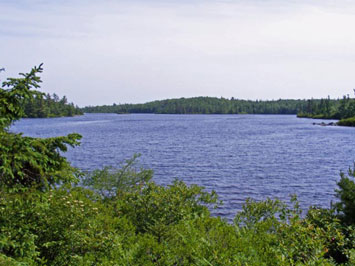 163 Lot 19 Birch Bear Run, Lewis Lake, NS - CAN (photo 1)