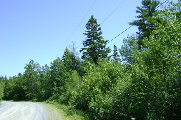 Lot 16 Medway Harbour Road, Mill Village, NS - CAN (photo 3)