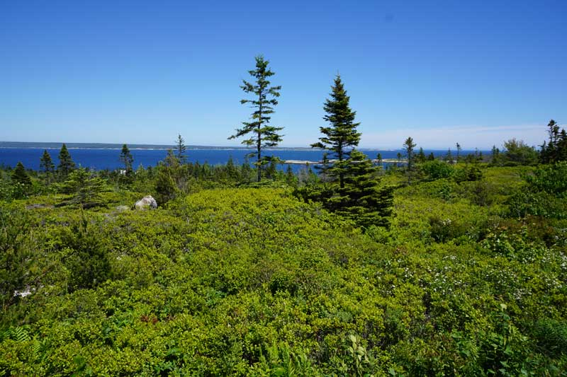 Lot 48aw Sweetwater Run, Colman's Cove, NS - CAN (photo 5)