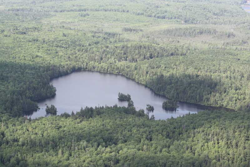Lot Porcupine Lake, Aldersville, NS - CAN (photo 1)