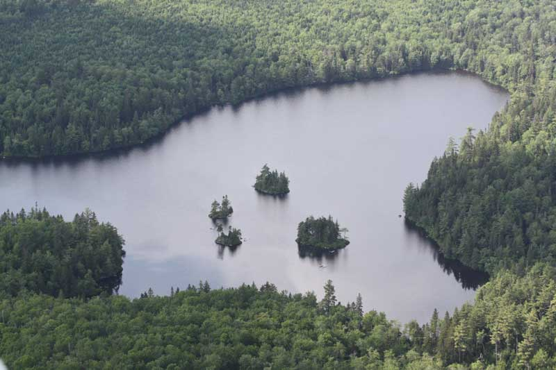 Lot Porcupine Lake, Aldersville, NS - CAN (photo 4)