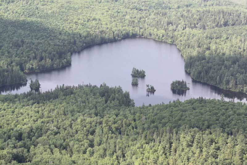 Lot Porcupine Lake, Aldersville, NS - CAN (photo 5)