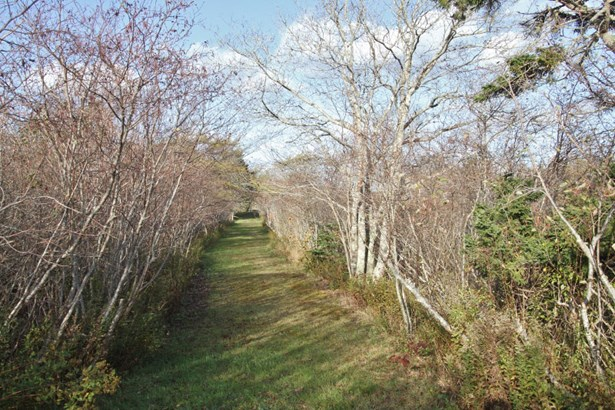 Route 1, Church Point, NS - CAN (photo 5)
