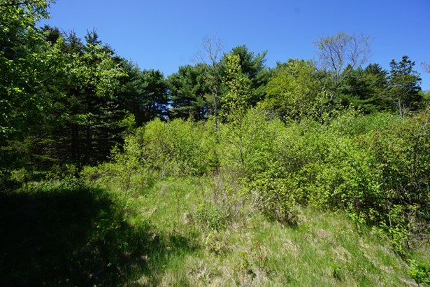 Lot 23-c Sandy Cove Loop, Marriott's Cove, NS - CAN (photo 3)