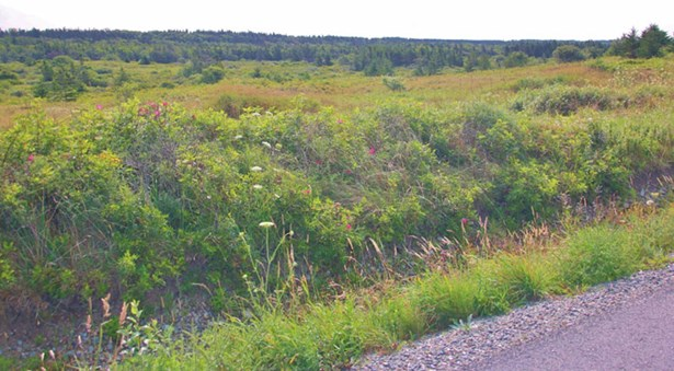 Highway 1, Saulnierville, NS - CAN (photo 1)