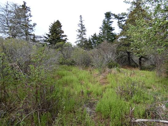 Lot 26 Blue Rocks Road, Blue Rocks, NS - CAN (photo 4)