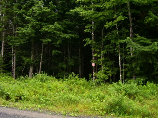 Lot 72 Hirtle Road, Maitland, NS - CAN (photo 1)