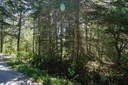 Lot R1 Schooner Road, Marriott's Cove, NS - CAN (photo 1)