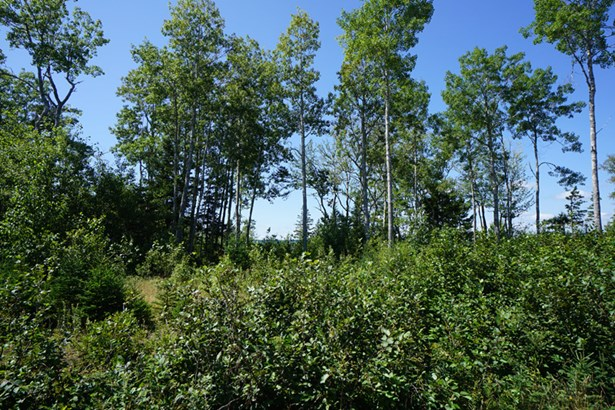 Lot 5 Endeavour Avenue, East River Point, NS - CAN (photo 2)