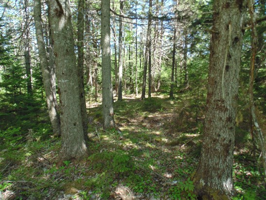Vacant Lot No 12, Chester Basin, NS - CAN (photo 2)