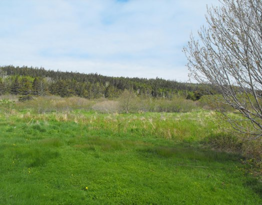 3259 Highway 217, Tiverton, NS - CAN (photo 5)