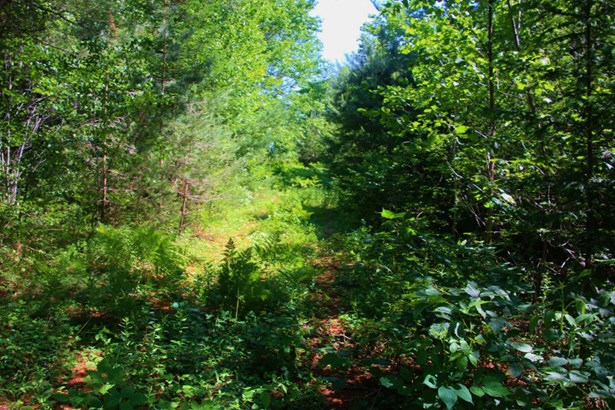 Langford Road, Southville, NS - CAN (photo 4)
