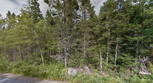 Lot 23 Forest Village Road, Simms Settlement, NS - CAN (photo 2)