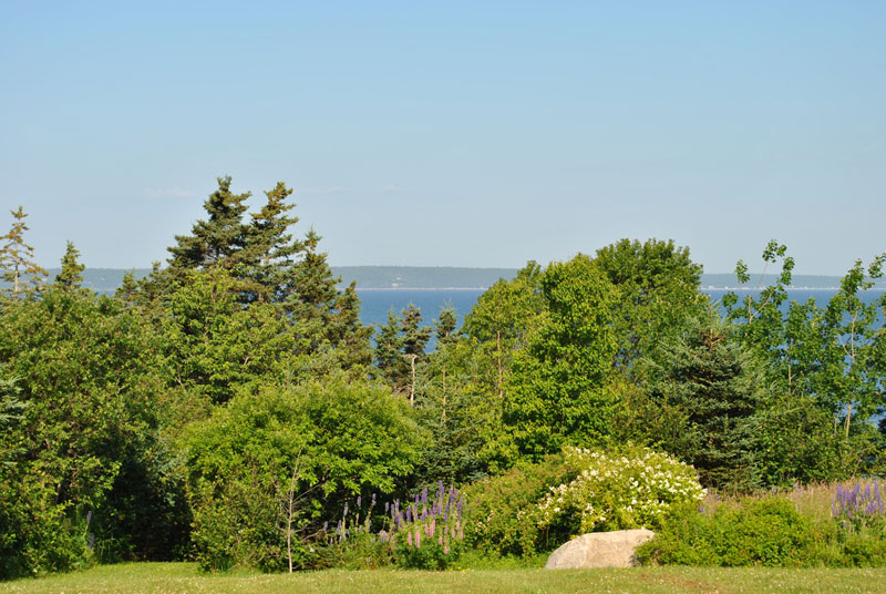 Lot 2 Amys, Hackett's Cove, NS - CAN (photo 1)