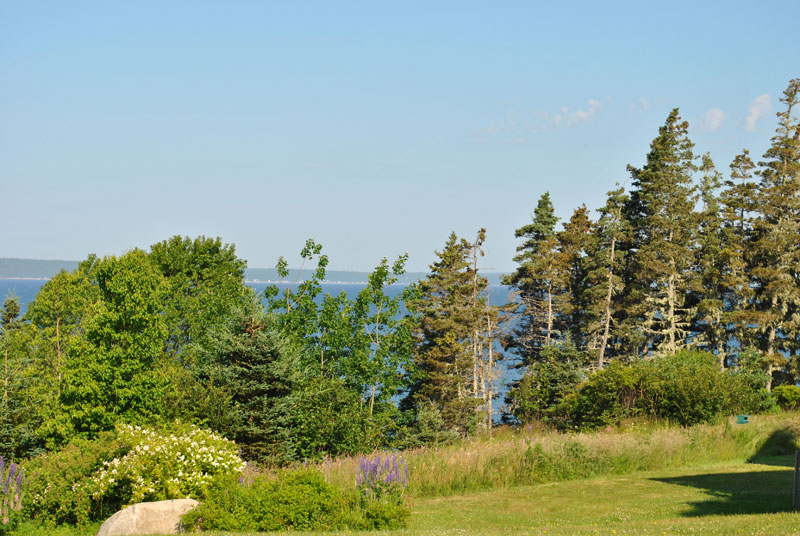 Lot 2 Amys, Hackett's Cove, NS - CAN (photo 3)