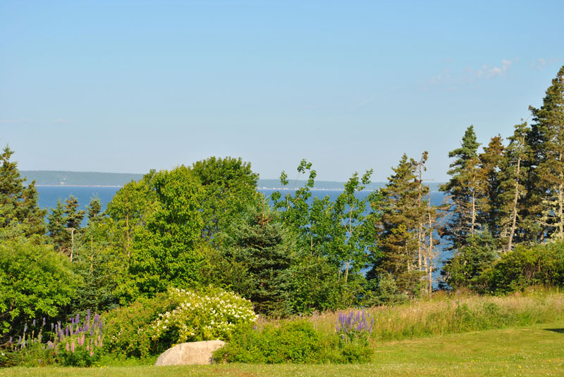 Lot 2 Amys, Hackett's Cove, NS - CAN (photo 4)