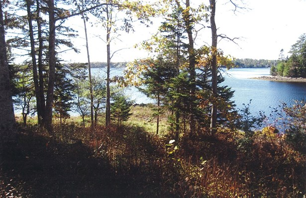 Lot Rocky Road, Marriott's Cove, NS - CAN (photo 4)