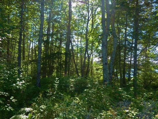 Lot 5 Cottage Lane, Lake Doucette, NS - CAN (photo 4)