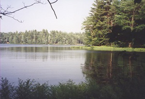Lot 35a Forest Point Loop, Labelle, NS - CAN (photo 1)
