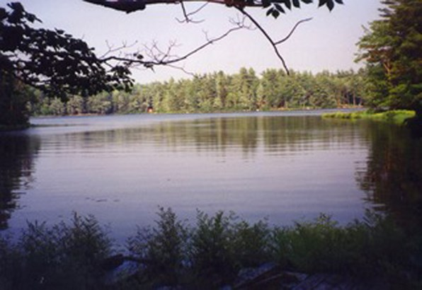 Lot 35a Forest Point Loop, Labelle, NS - CAN (photo 3)