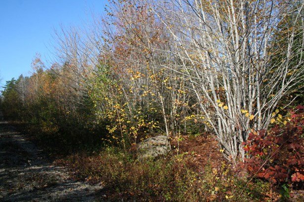 Lot 4 Hwy 329 , Mill Cove, NS - CAN (photo 3)