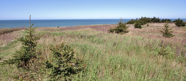 Lot 2 Baseline Road, Cape St Mary, NS - CAN (photo 2)