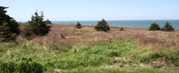 Lot 2 Baseline Road, Cape St Mary, NS - CAN (photo 5)