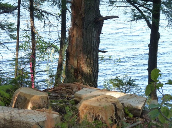 Myra Road, Porters Lake, NS - CAN (photo 5)