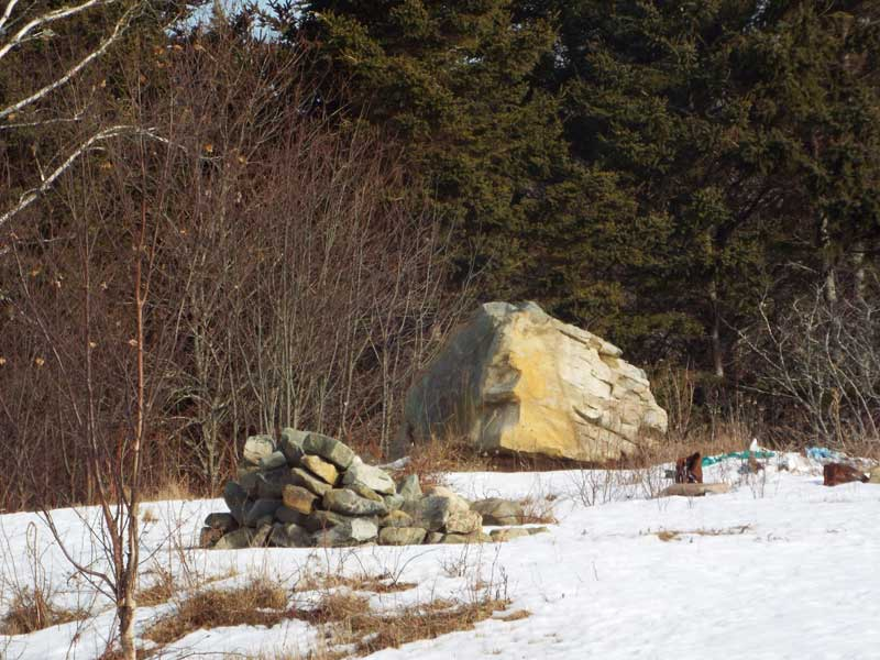 Lot Highway 331, Vogler's Cove, NS - CAN (photo 4)
