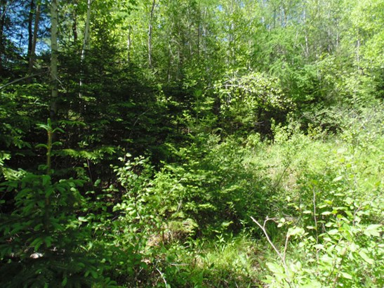 Lot 12 Highway 3, Chester Basin, NS - CAN (photo 4)