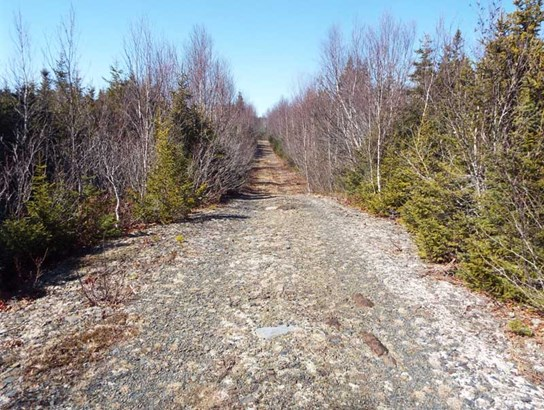 6763 Highway 331, Broad Cove, NS - CAN (photo 4)