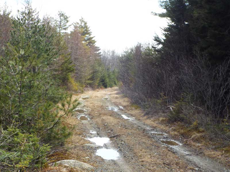 6763 Highway 331, Broad Cove, NS - CAN (photo 5)
